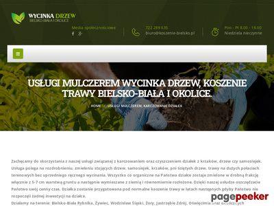 Wycinka drzew, karczowanie, koszenie trawy Bielsko-Biała